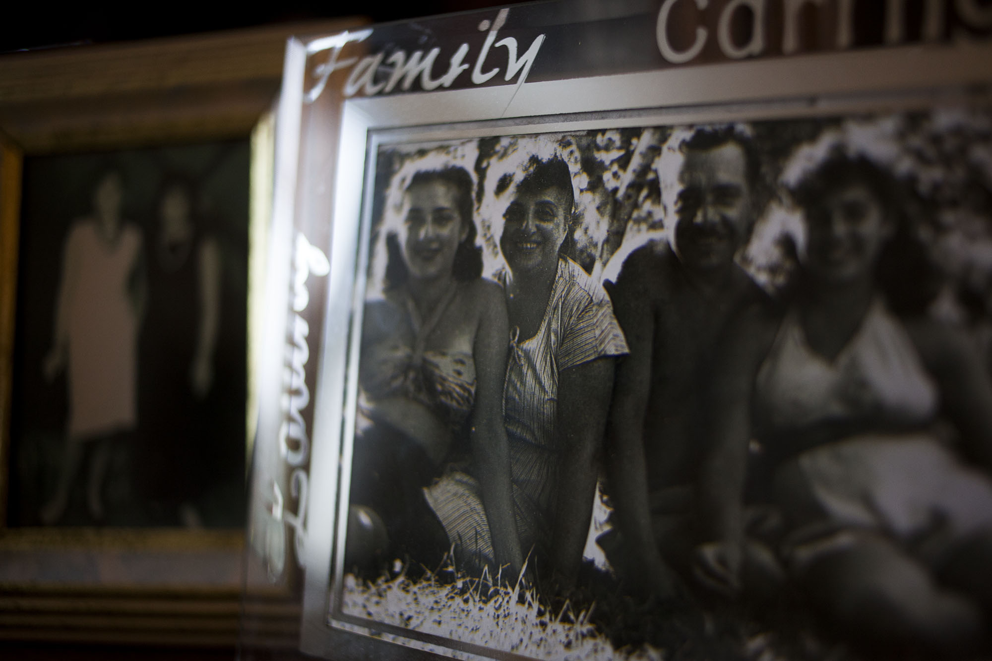 Romer family