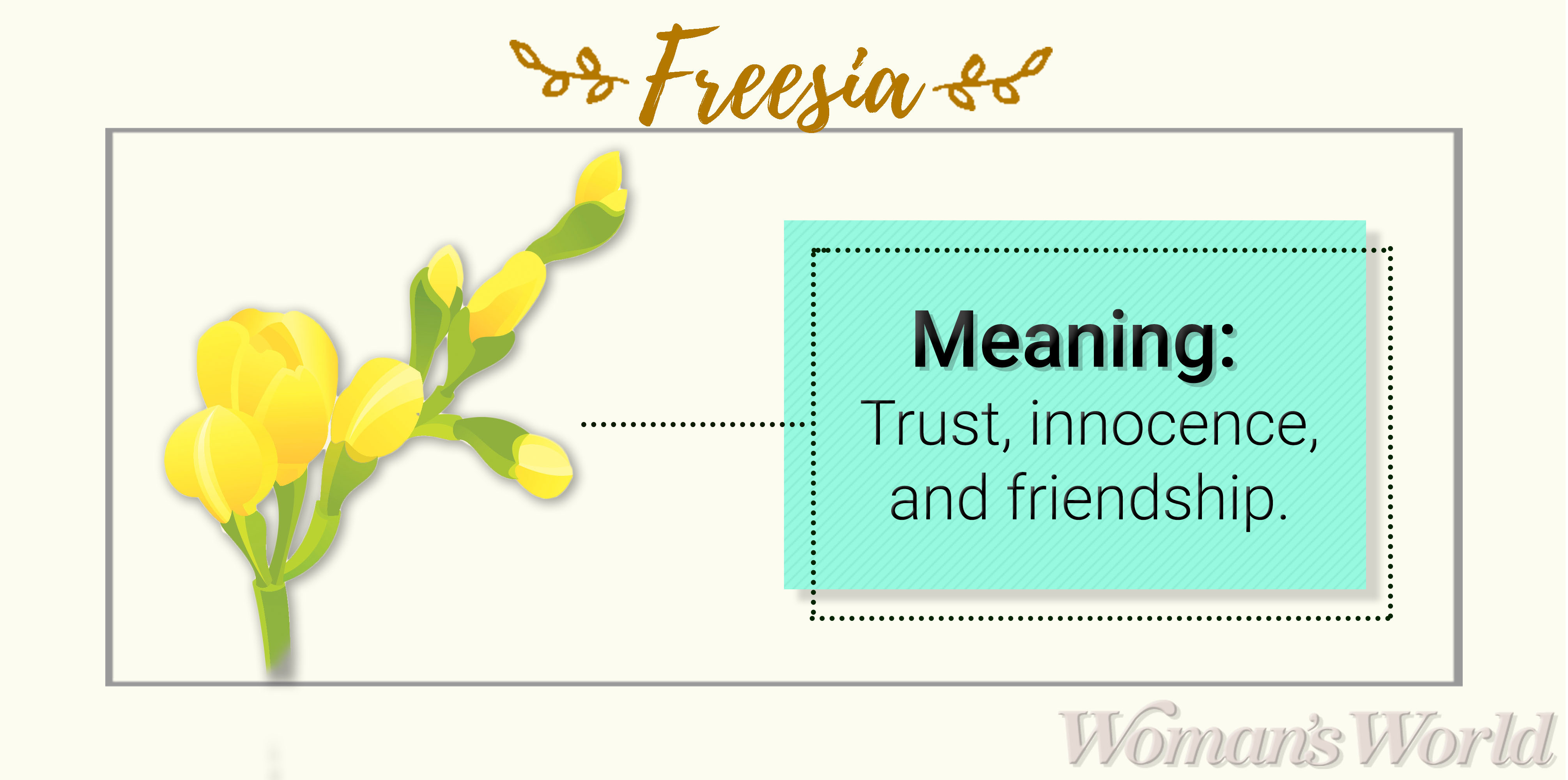 Freesia Meaning