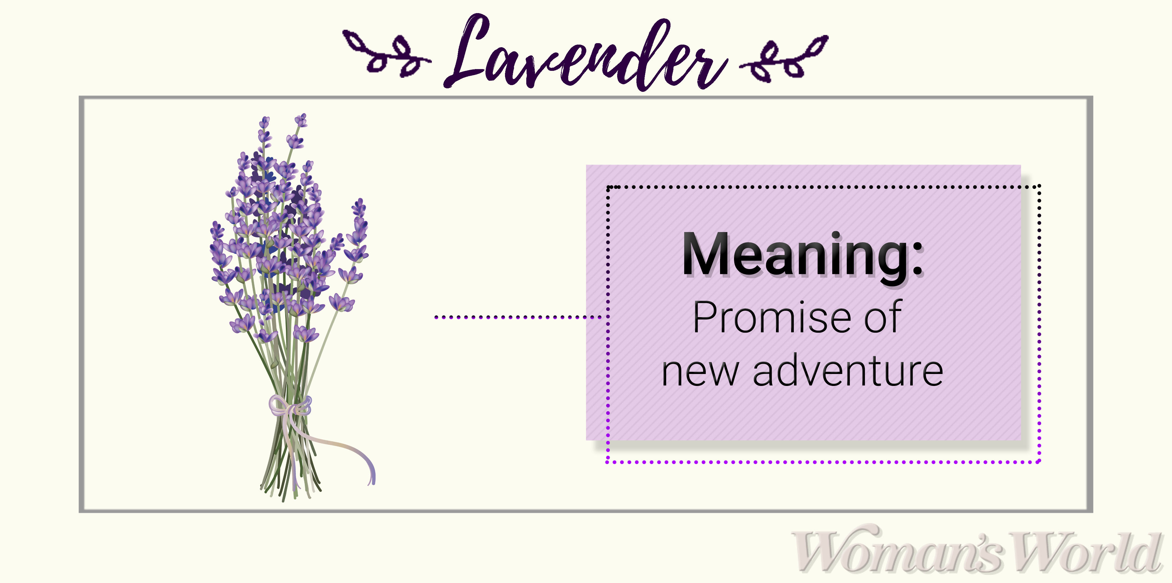Lavender Meaning