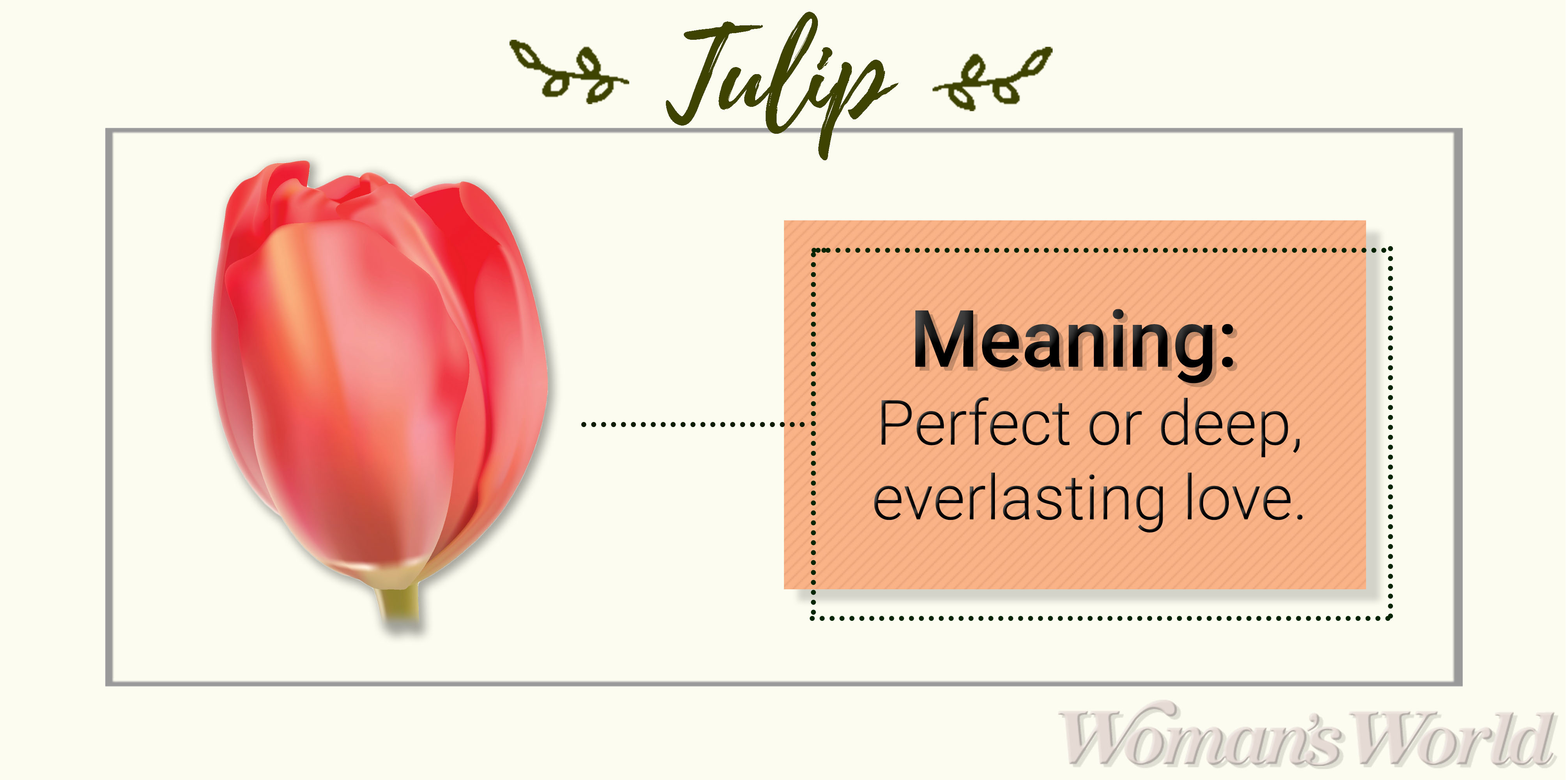 Tulip Meaning