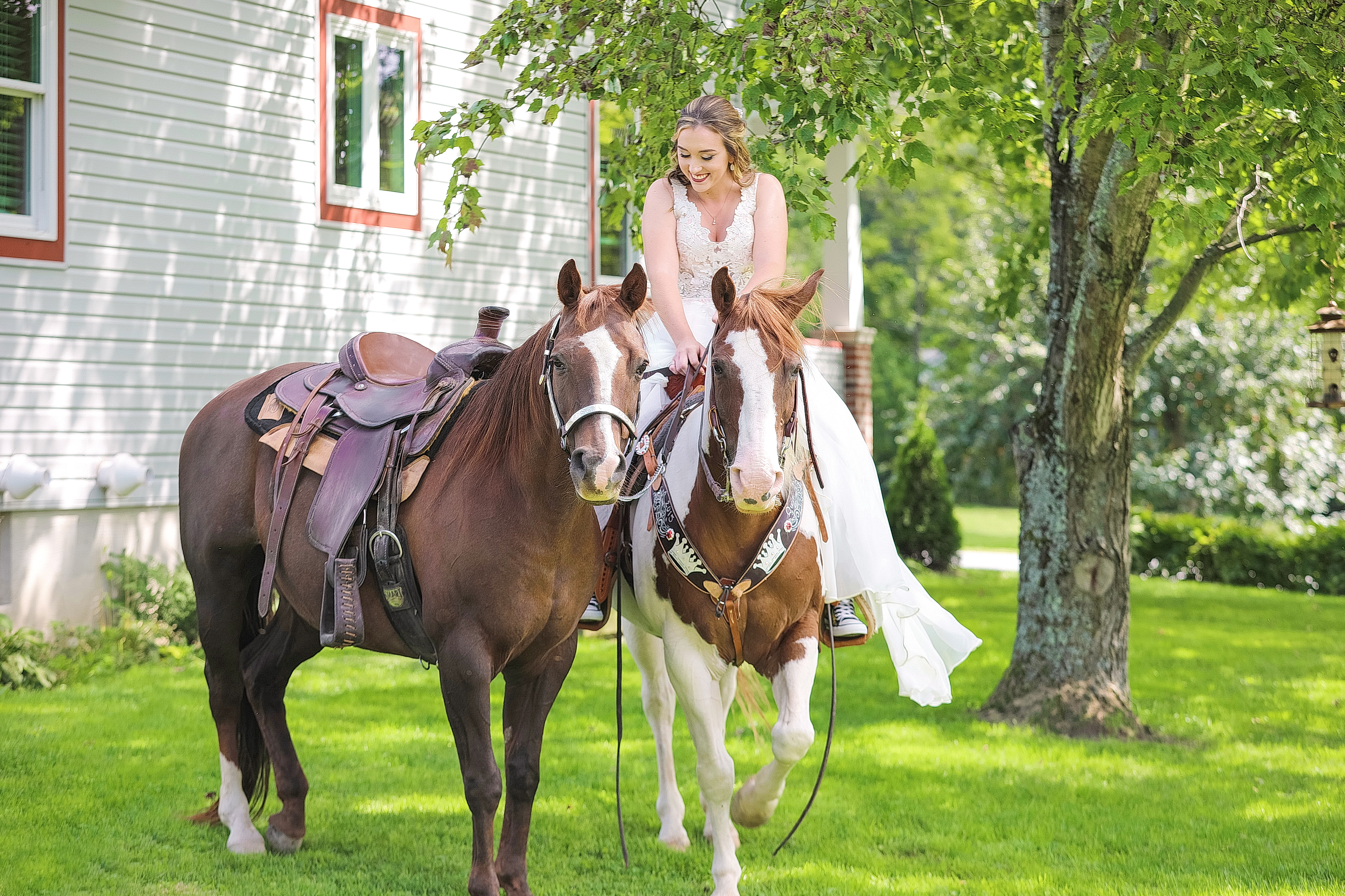 wedding photoshoot horses