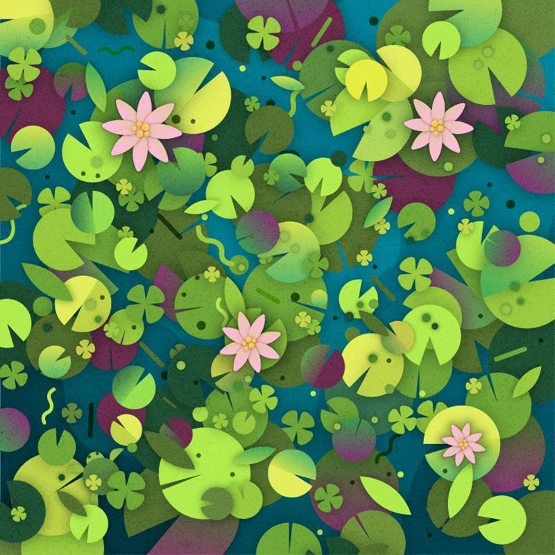 lilypads puzzle