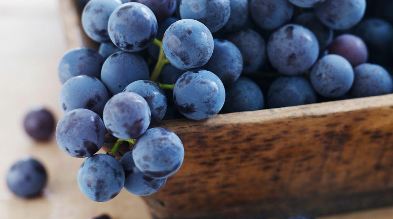 Filling Foods Grapes