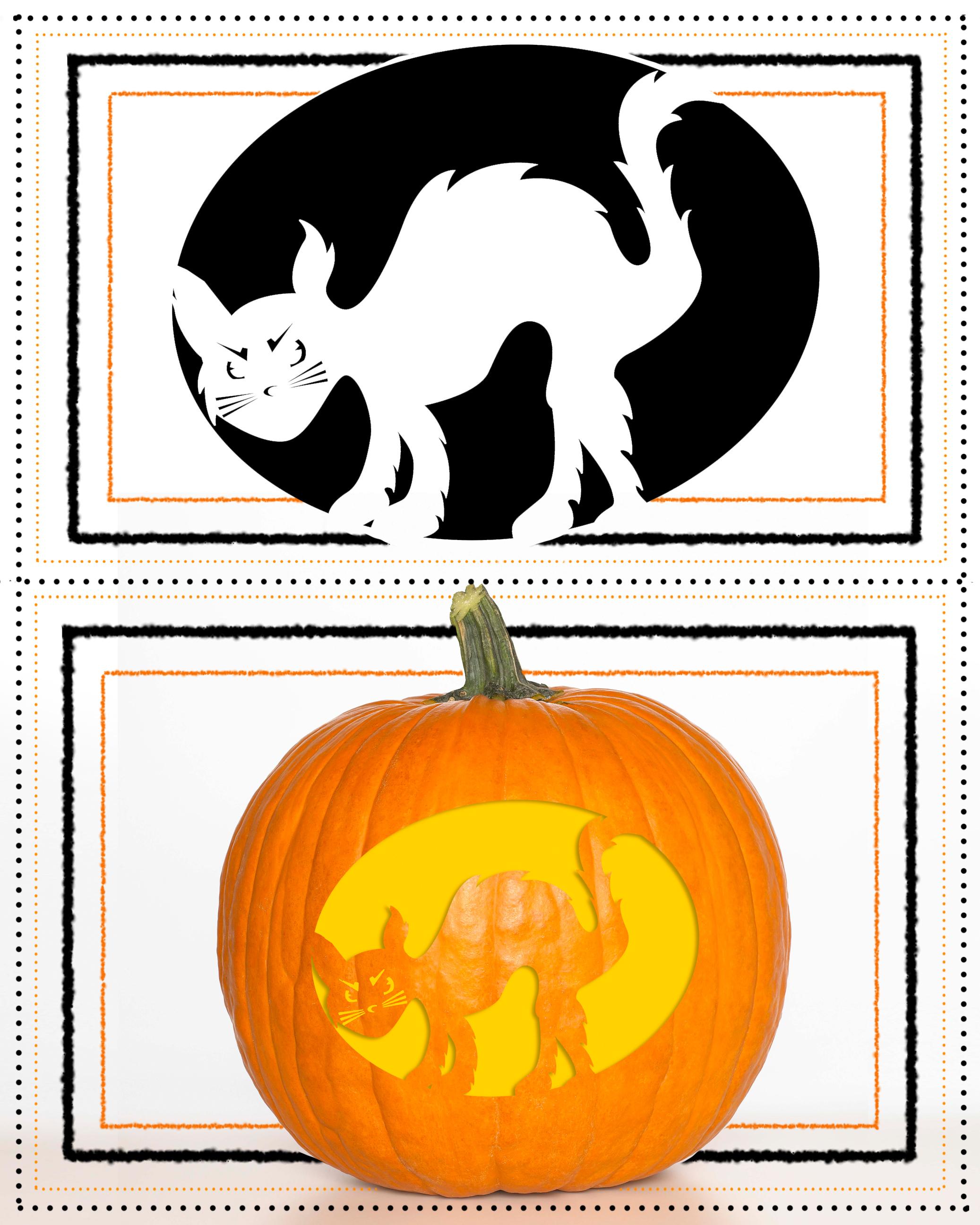 Pumpkin Stencil Cat