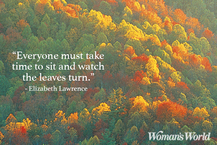 Fall Quotes And Sayings To Get You In The Spirit Of Autumn