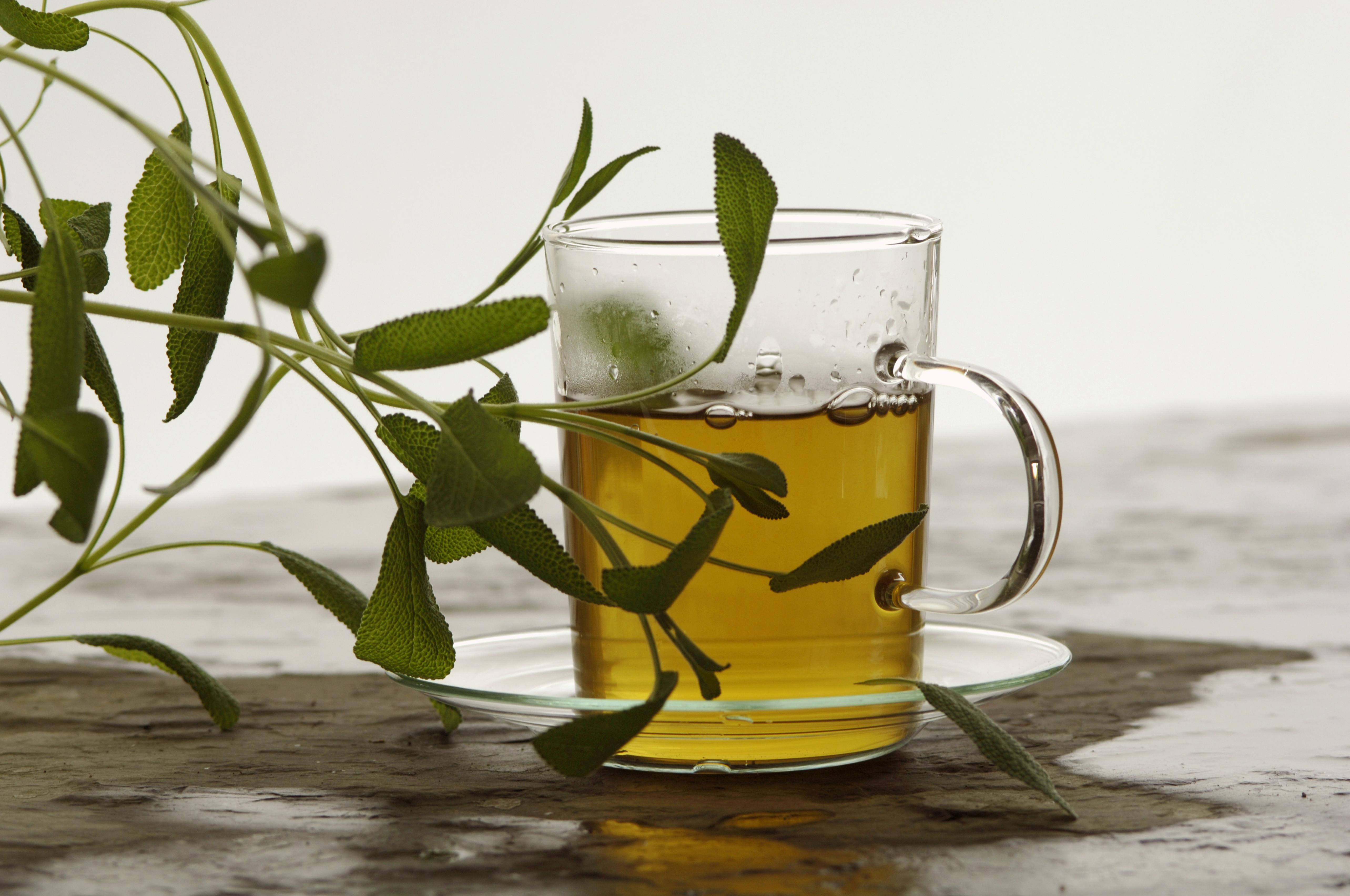 best tea for menopause