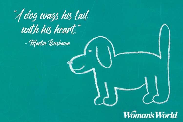 quotes about losing a dog to remember them in pet heaven