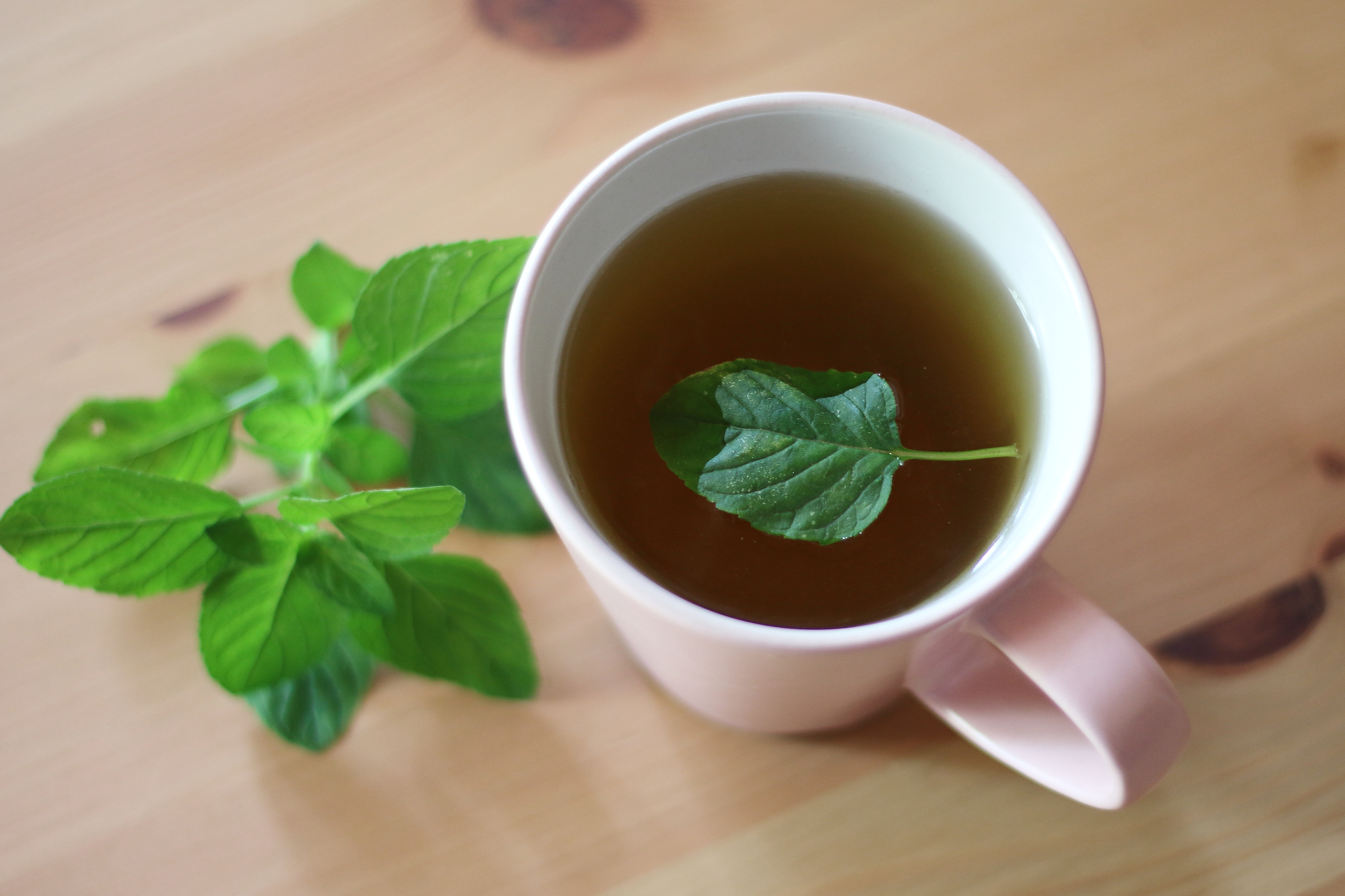how much green tea to drink to lose weight