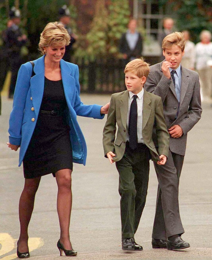When William Told Diana He Didn't Want to Be King, Harry Had the Cheekiest Response
