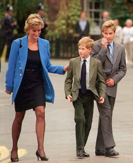 Prince William Didn't Want to Be King, According to Diana