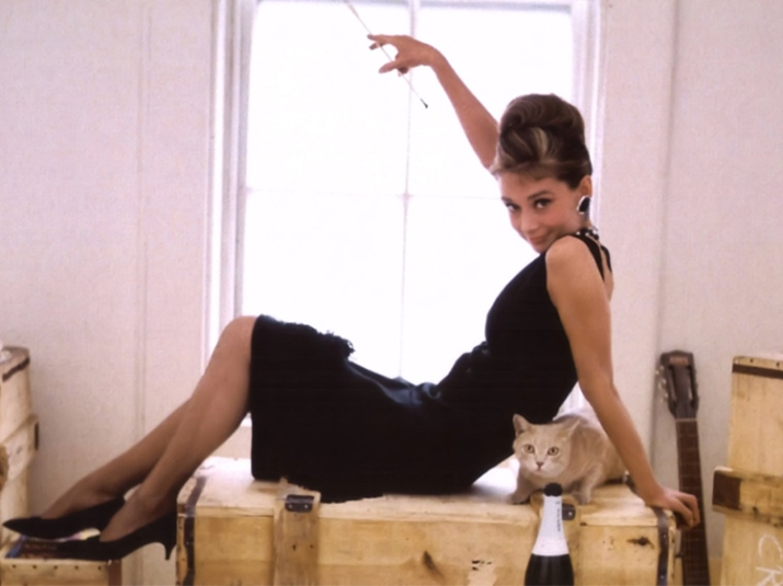 The Story Of The Breakfast At Tiffany S Cat
