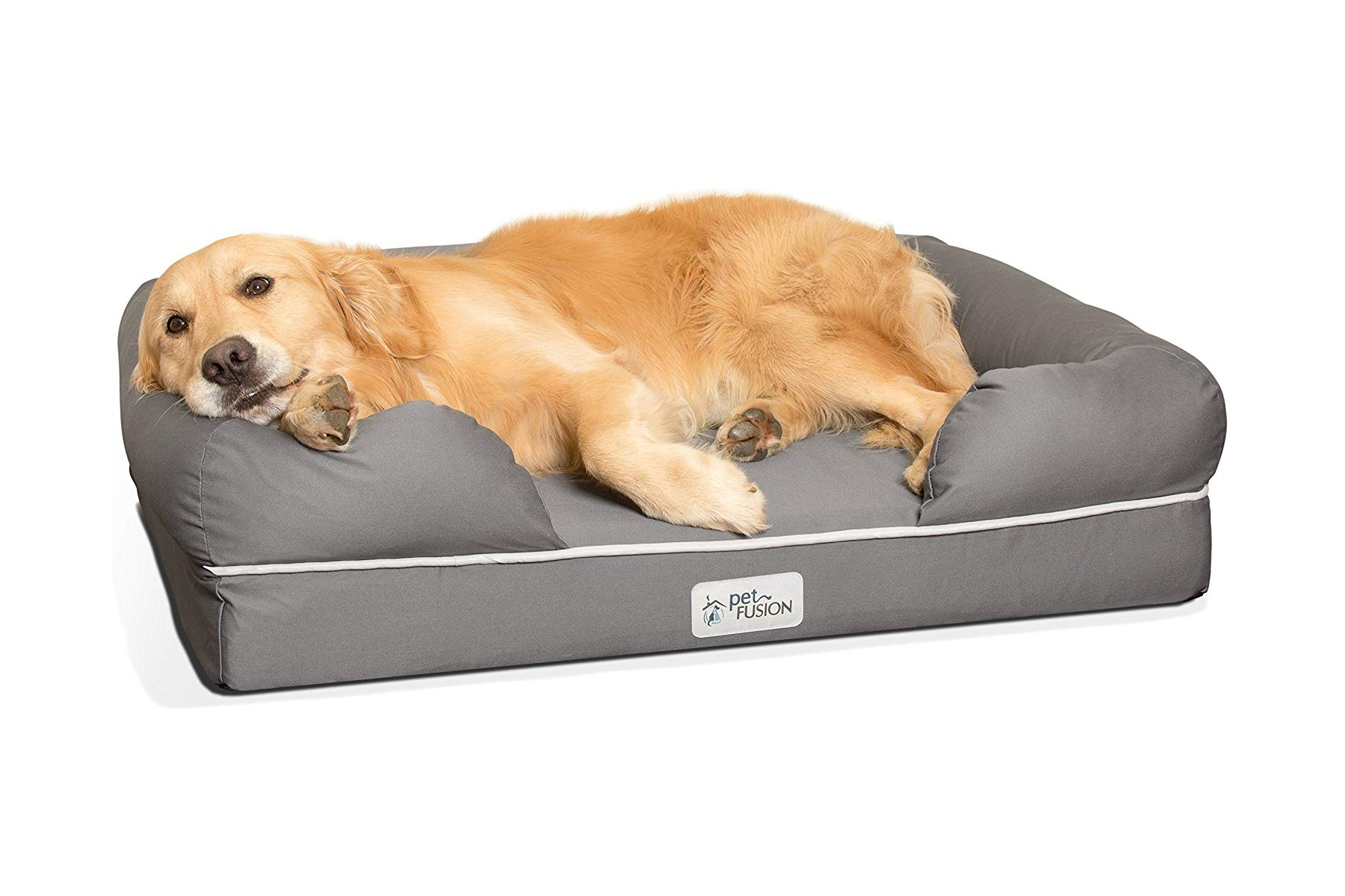 16 Best Dog Beds For Small Large And Medium Dogs
