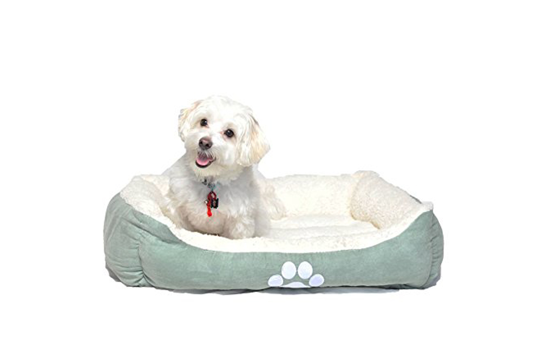 Picture of: 16 Best Dog Beds For Small Large And Medium Dogs