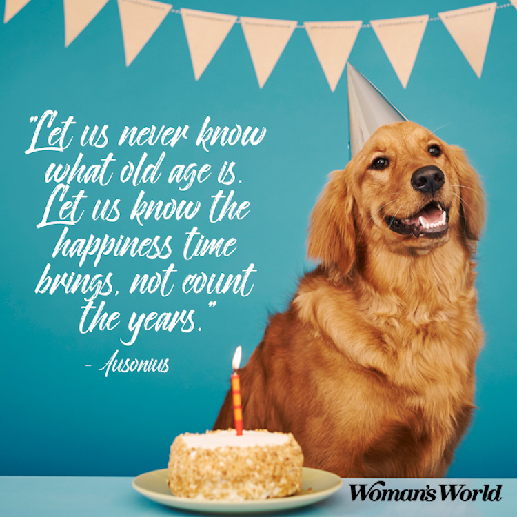 Surprising Birthday Quotes For A Friend To Share On Their Big Day Funny Birthday Cards Online Drosicarndamsfinfo
