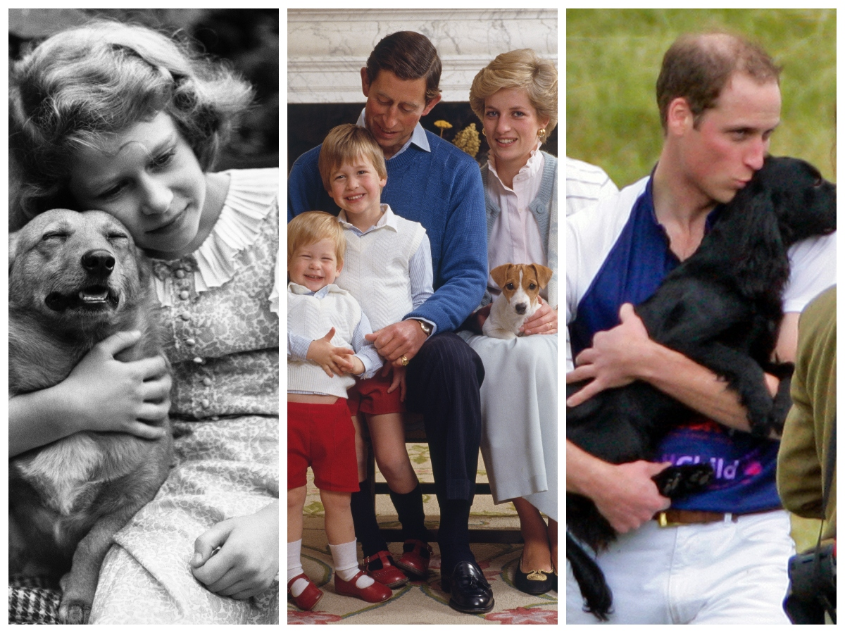 Rare Photos Of The Royal Family With Dogs