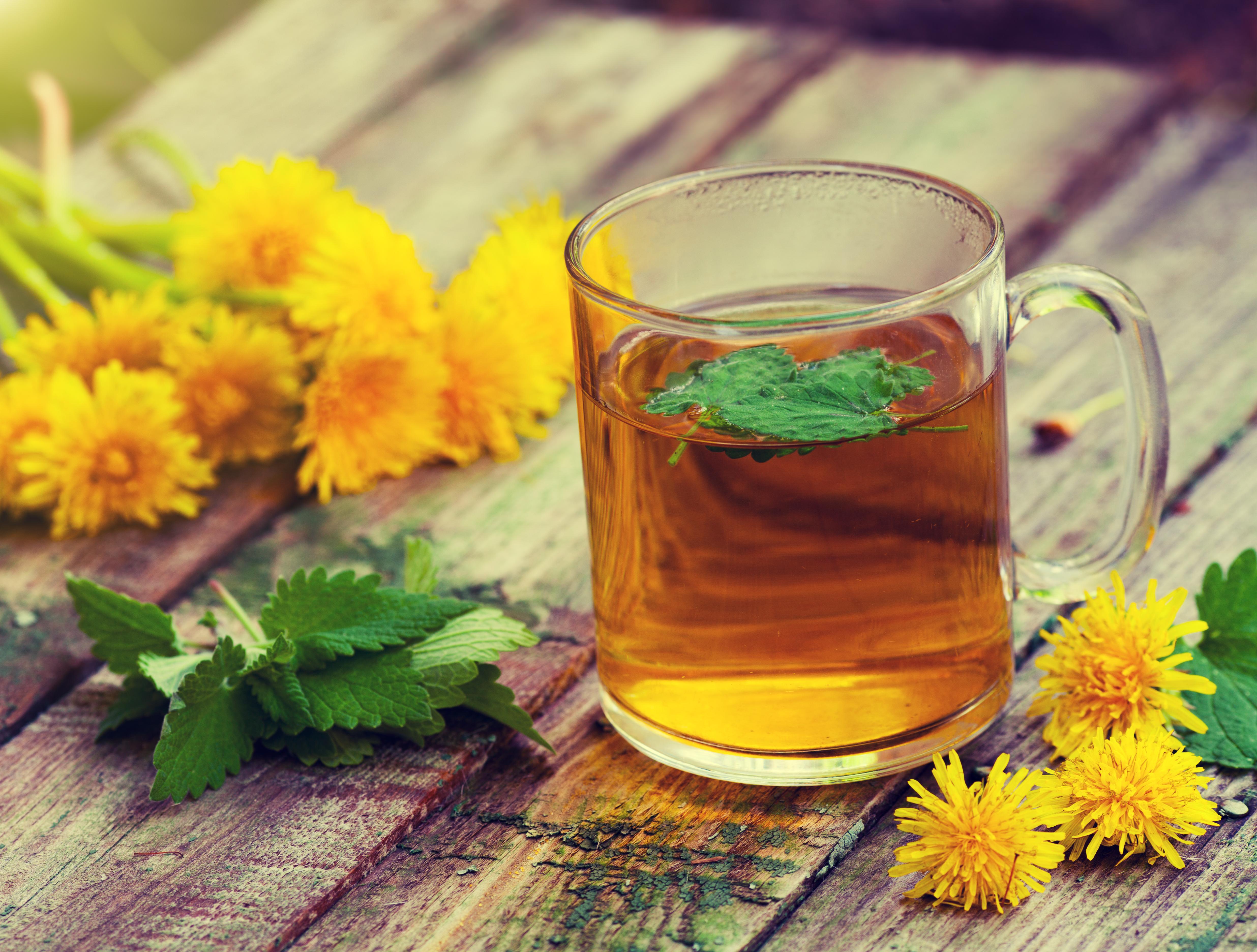 dandelion-tea-weight-loss