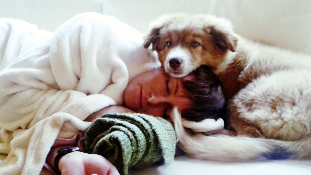 Why Dogs Know When You're Sick - Woman's World