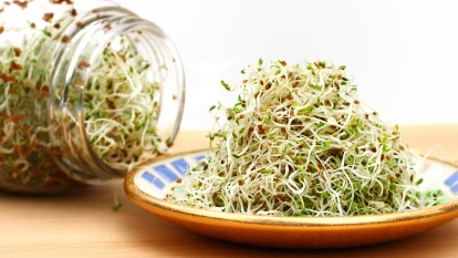 Jar of alfalfa spilling over onto plate