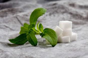 stevia-for-diabetes