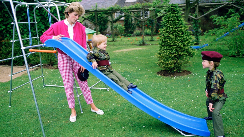 Princess Diana with young William and Harry on a slide