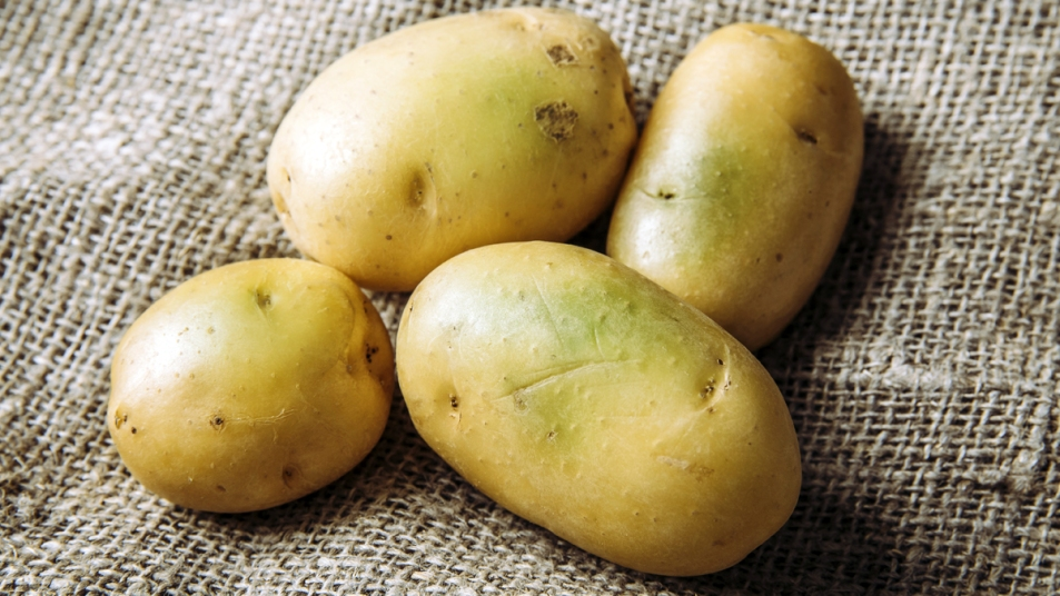 Potatoes with green spots