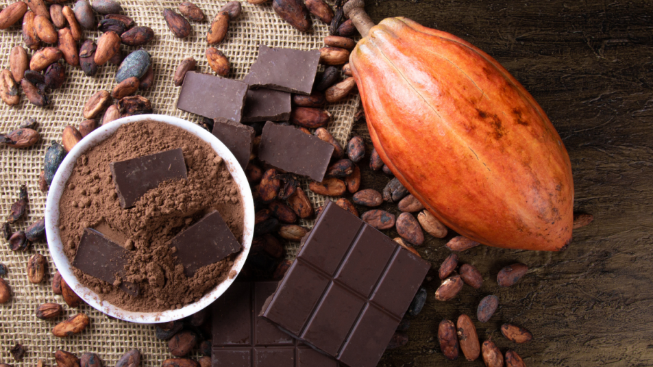 cocoa-extract-age-related-muscle-loss