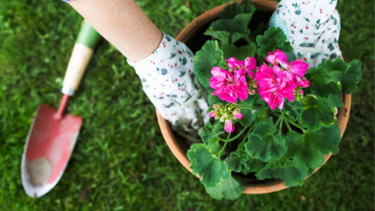 woman gardening with a potted plant and flower