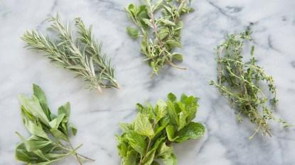 An assortment of herbs