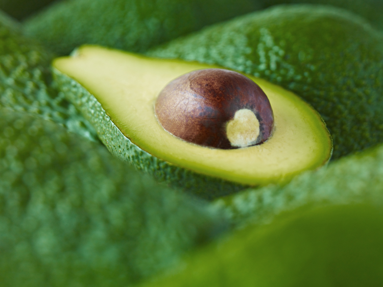 do avocados ripen on the tree