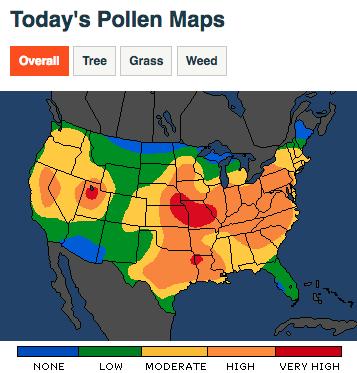 Pollen Map