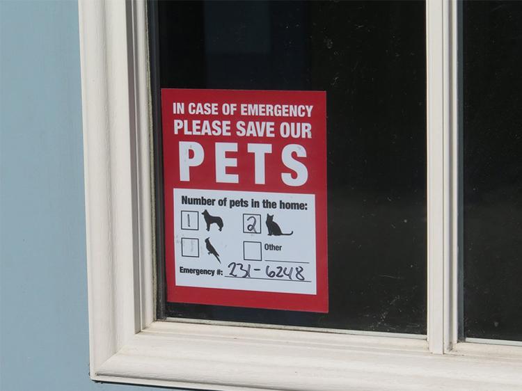 pet alert sticker