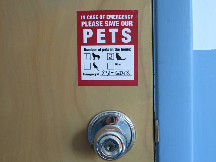 pet emergency sticker