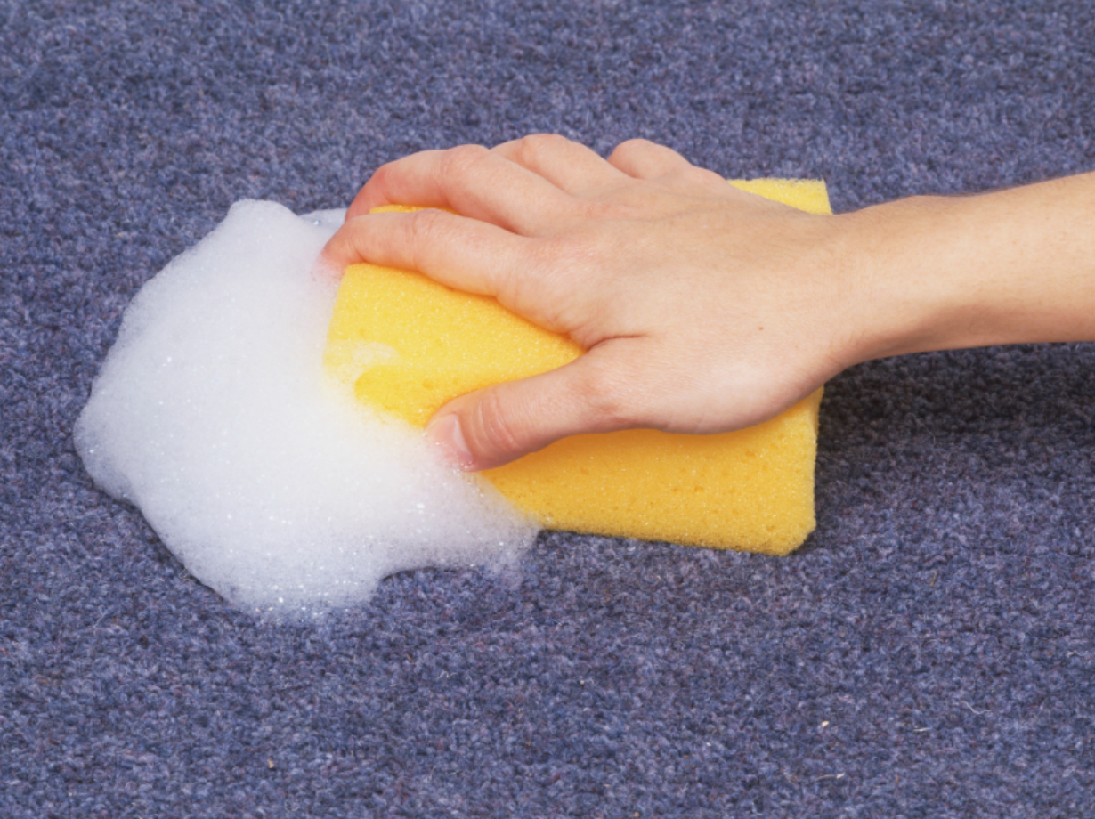 hand scrubbing sponge on dirty carpet