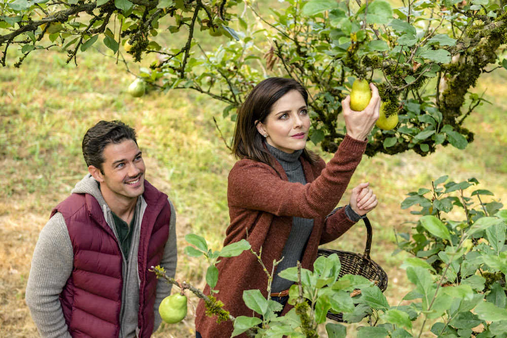 Ryan Paevey and Jen Lilley in Harvest Love - Crown Media